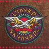 Lynyrd Skynyrd - Sweet Home Alabama Grafik