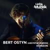 Absynthe Minded & Bert Ostyn - Horizon - uit Liefde Voor Muziek (Live) artwork