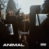 Animal by Nayt iTunes Track 1
