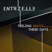 Feeling Heavy These Days - EP
