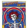 Grateful Dead Skull Roses Remastered