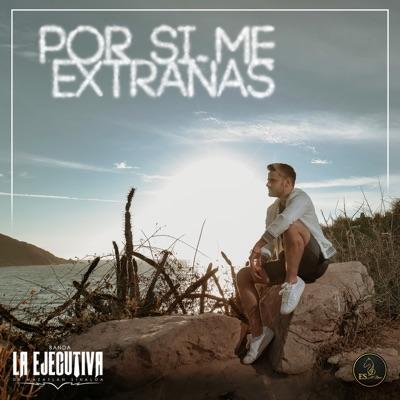 Por Si Me Extrañas Banda La Ejecutiva De Mazatlan Sinaloa Shazam