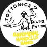 The Phenomenal Handclap Band - Do What You Like