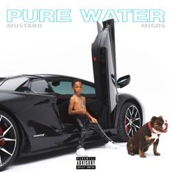 View album Pure Water - Single