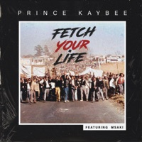 Prince Kaybee - Fetch Your Life (feat. Msaki) [Edit]