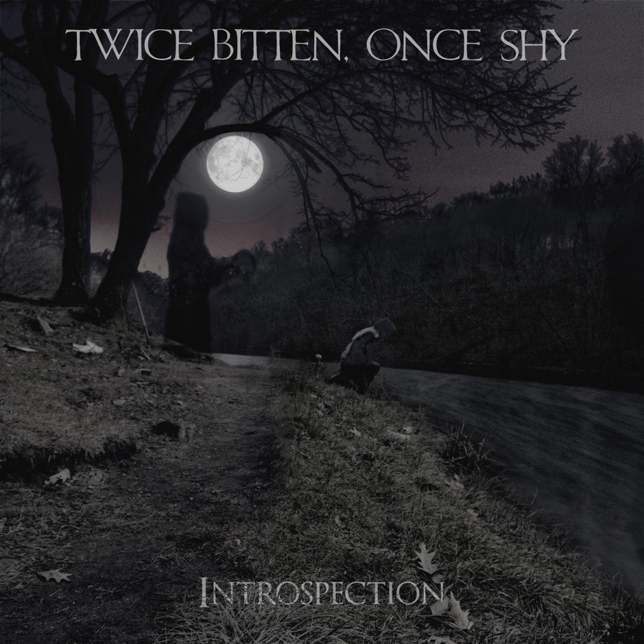 Twice Bitten, Once Shy - Introspection (2018)