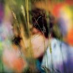 Sam Amidon - Sundown (feat. Beth Orton)