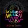 Artisti Vari - Alianza Musical de Cuba: al Son del Caballero