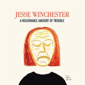 Jesse Winchester - Don't Be Shy
