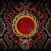 Whitesnake - Gonna Be Alright