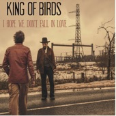 King Of Birds - I Hope We Don't Fall In Love