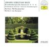Bach Brandenburg Concertos Nos 4 5 6