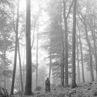 folklore Album Reviews