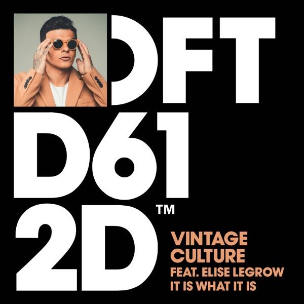 Vintage Culture mit It Is What It Is (feat. Elise LeGrow)