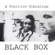 Black Box - A Positive Vibration
