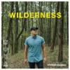 Spencer Crandall - Wilderness  artwork