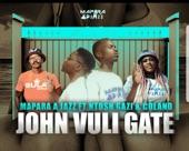 John Vuli Gate (feat. Ntosh Gazi & Colano) - Single