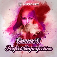 Perfect Imperfection (Sashman rmx) - CAMERA