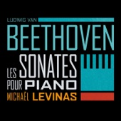 Sonate pour piano No. 14 en ut dièse mineur, Op. 27 No. 2 « Clair de lune »: III. Presto agitato artwork