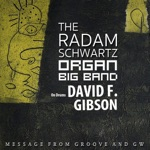 Radam Schwartz & The Radam Schwartz Organ Big Band - Aint No Way (feat. David F Gibson)