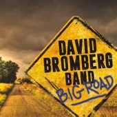 David Bromberg Band - George, Merle & Conway