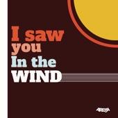 Arema Arega - I Saw You in the Wind