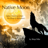 Native Moon (Native American Flute for Sleep & Relaxation)