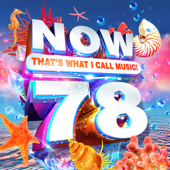 NOW That's What I Call Music!, Vol. 78