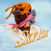 SKYBOX artwork