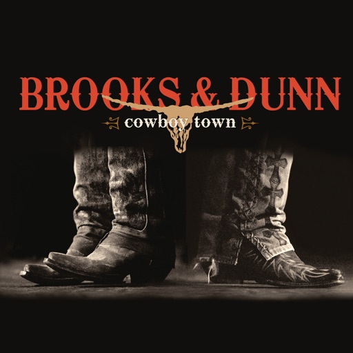 Art for Put a Girl in It by Brooks & Dunn