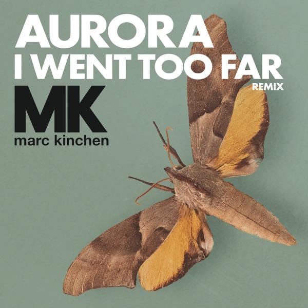 I Went Too Far (MK Remix) [Radio Version] - Single