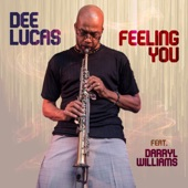 Darryl Williams;Dee Lucas - Feeling You (feat. Darryl Williams)