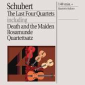 "String Quartet No. 14 in D Minor, D. 810 - ""Death and the Maiden"": IV. Presto artwork"