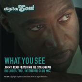 What You See (Full Intention Club Mix) [feat. Fil Straughan]