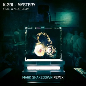 Mystery (Mark Shakedown Remix) - Single Mp3 Download