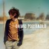 Dawid Podsiadło - Comfort and Happiness artwork