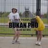 Liany Panmuma - Bukan PHO (feat. Aldo Bz) artwork