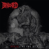 Benighted - X2Y (Live)