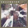 Collington - Beyond It artwork