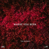Where You Been - The PropheC