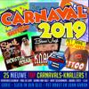 Verschillende artiesten - Carnaval 2019 kunstwerk
