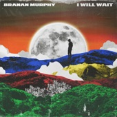 Branan Murphy - I Will Wait