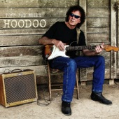 Tony Joe White - Alligator, Mississippi