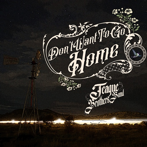 Art for Don't Want to Go Home by Teague Brothers Band