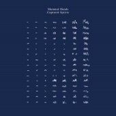 Mammal Hands - Versus Shapes