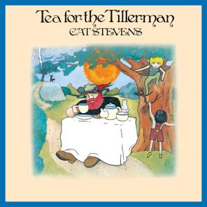 Cat Stevens - Tea For The Tillerman (Remastered 2020)