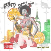 Pam Grier (feat. Rim DaVillin & P.U.R.E.) - Single