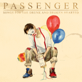Songs For The Drunk And Broken Hearted Deluxe - Passenger
