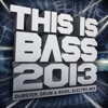 This Is Bass 2013 – Dubstep, Drum & Bass, Electro Mix