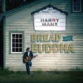 Harry Manx - Nine Summers Lost
